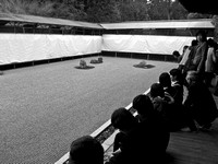 Contemplation at Ryoan-ji