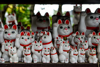 The beckoning cats of Gotokuji