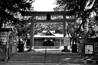 Tori and Entrance to Shrine