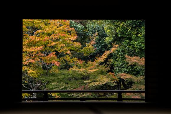 Tenryū-ji (天龍寺)