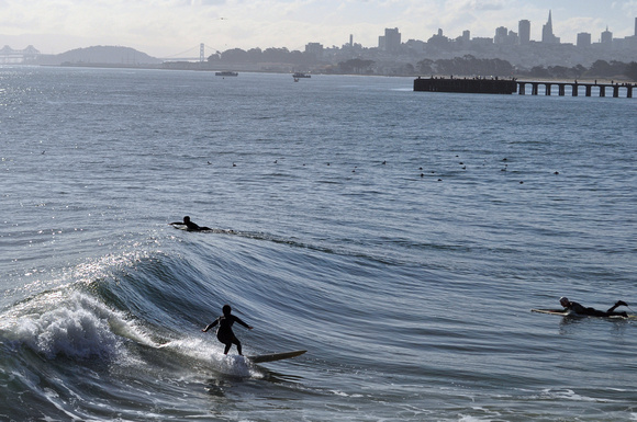 Surfing in the Bay