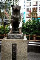 Faithful dog Hachikō (忠犬ハチ公)