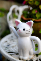 White cat watering can
